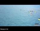 Fishy Floaters FAIL